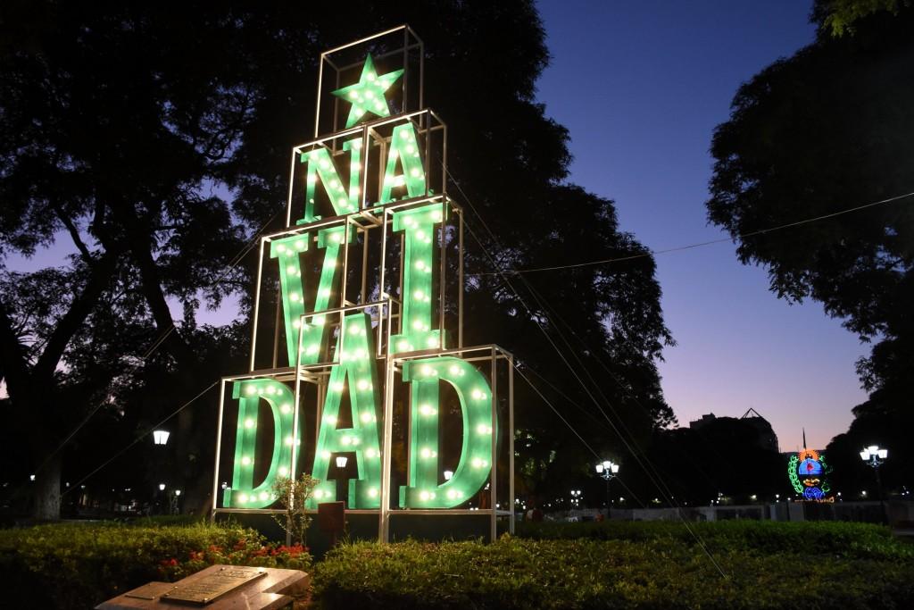 Pino Navidad en la Ciudad. Plaza Independencia