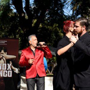 Vino x tango 3