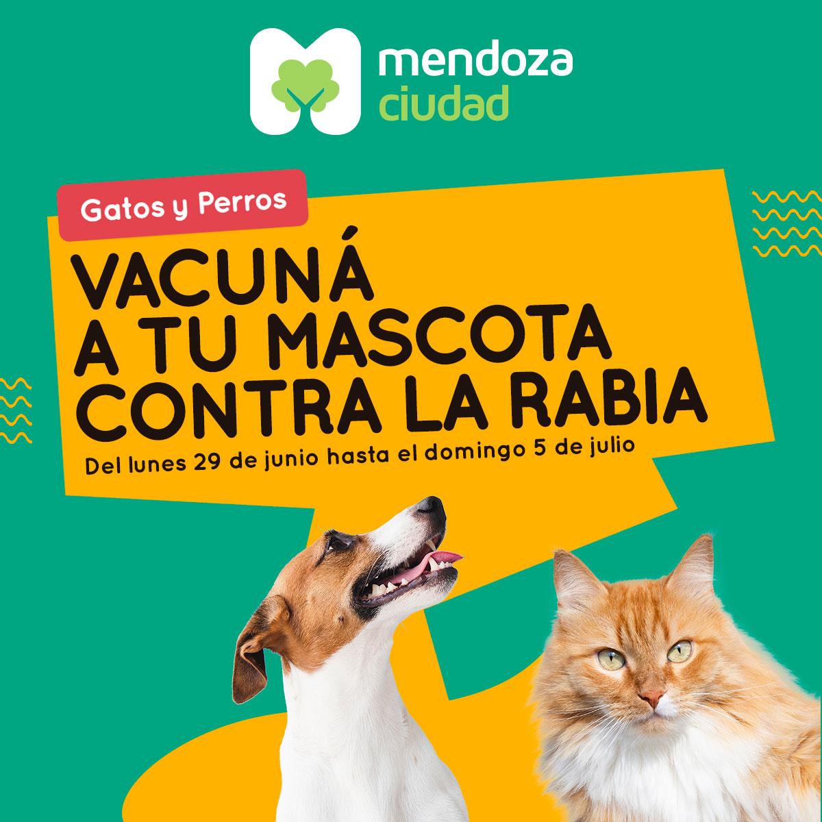 vacunacion1 1